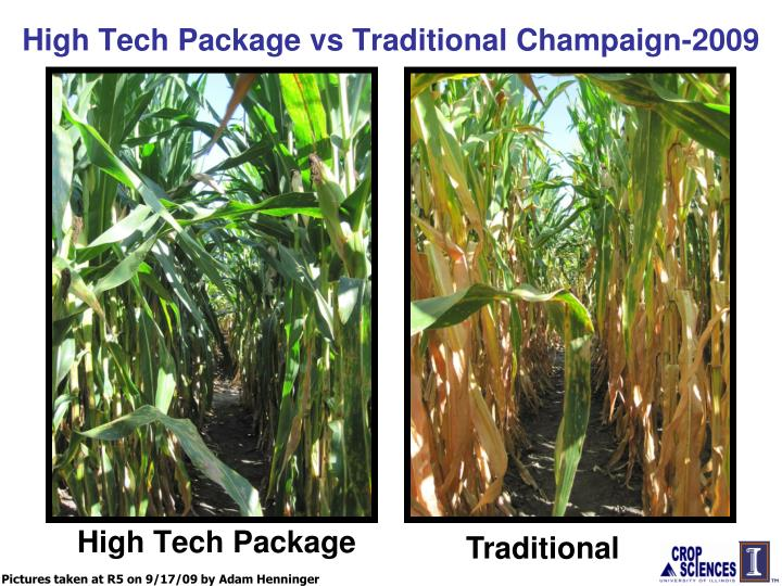 High Tech Package vs Traditional Champaign-2009