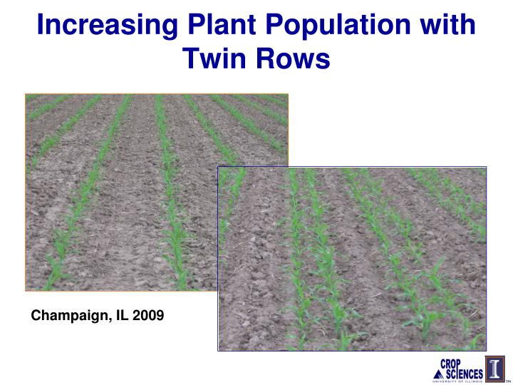 Increasing Plant Population with Twin Rows