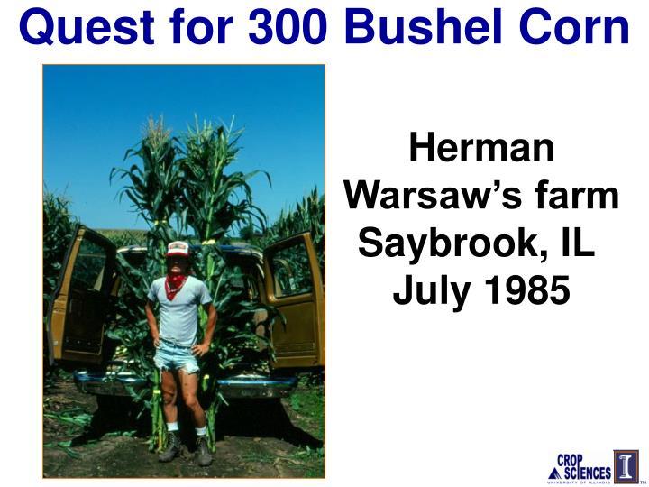 Quest for 300 Bushel Corn