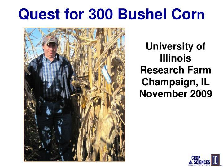 Quest for 300 Bushel Cor