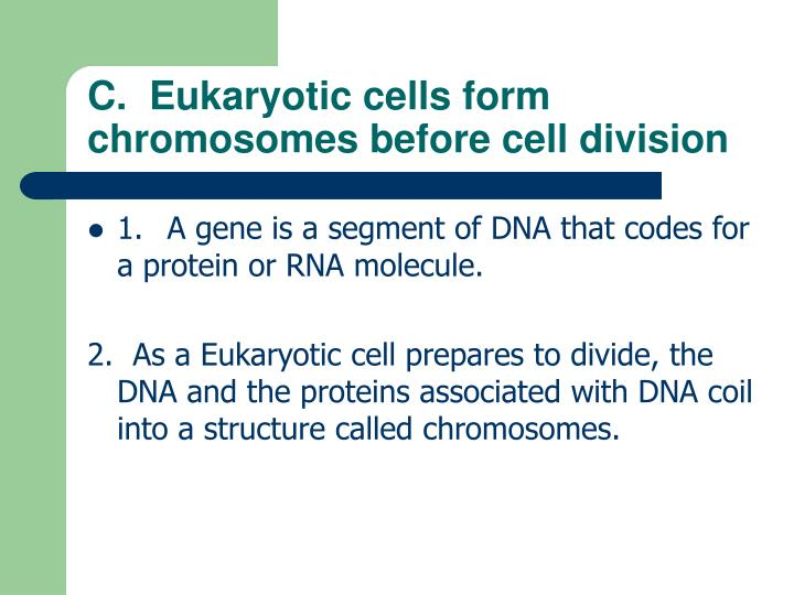 C.  Eukaryotic cells form chromosomes before cell division