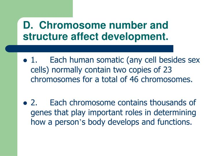 D.  Chromosome number and structure affect development.
