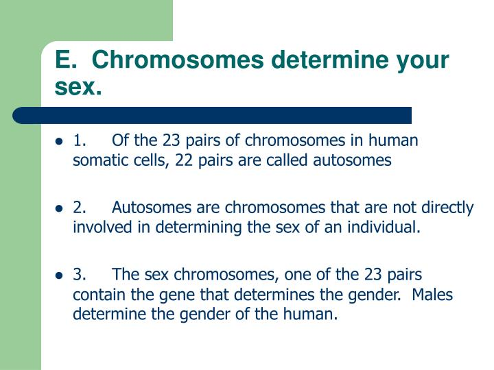E.  Chromosomes determine your sex.