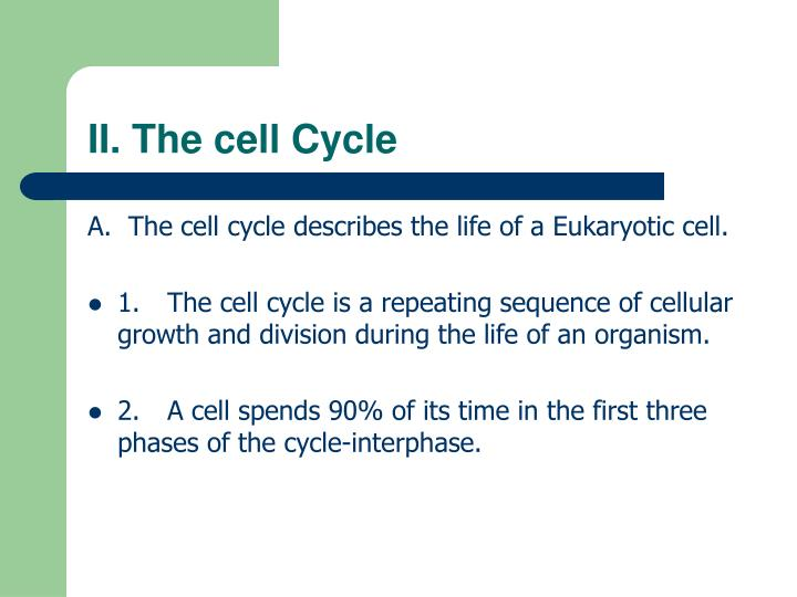 II. The cell Cycle