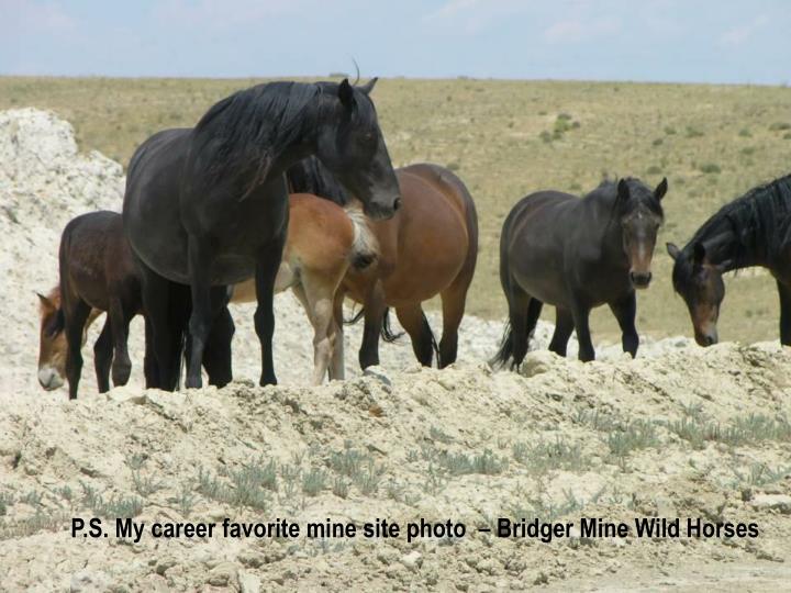 P.S. My career favorite mine site photo  – Bridger Mine Wild Horses