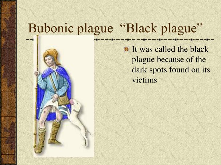 "Bubonic plague  ""Black plague"""
