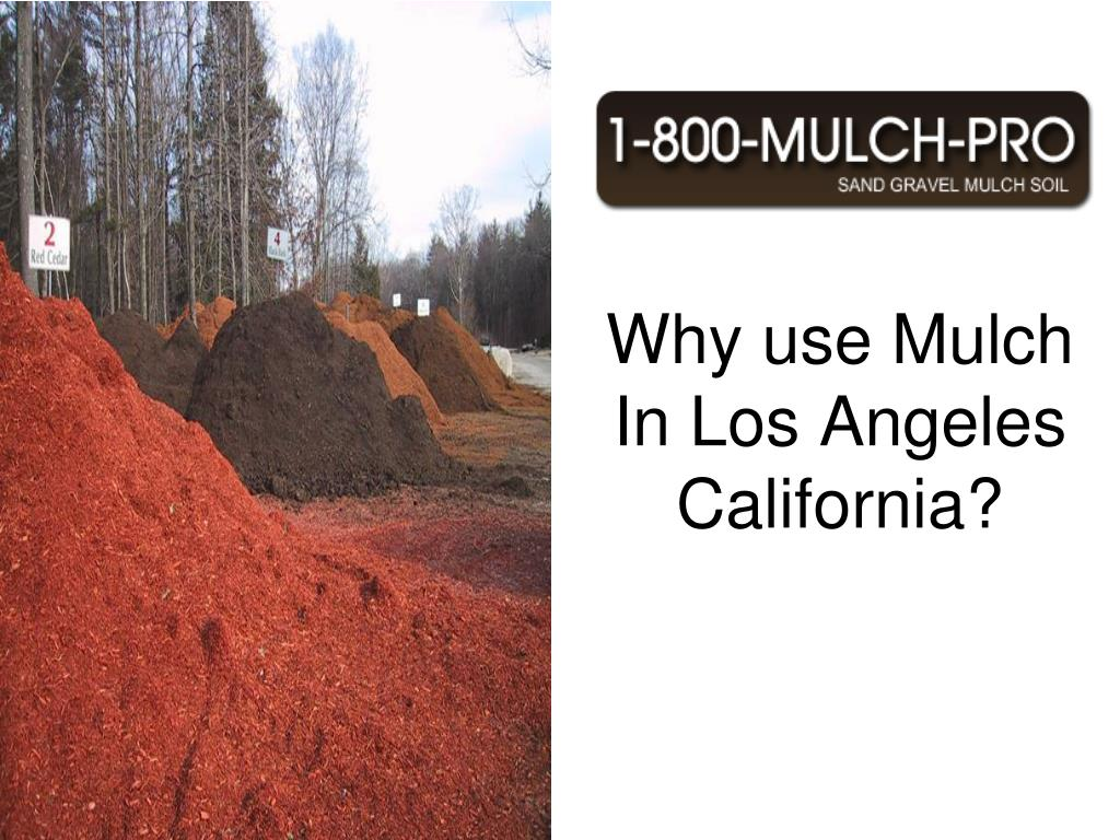 Why use Mulch In Los Angeles California? Los Angeles California has the best Mulch.  Using mulch can benefit your garden and landscape. Los Angeles California is known for its beautiful mulched landscaped gardens.