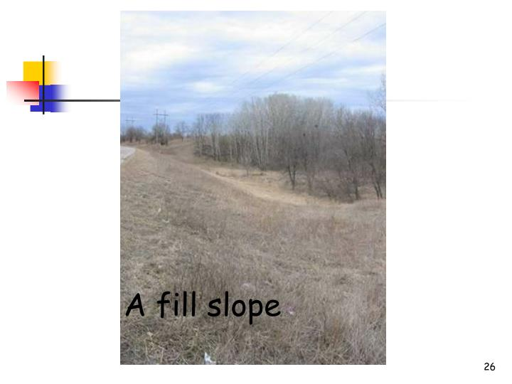 A fill slope