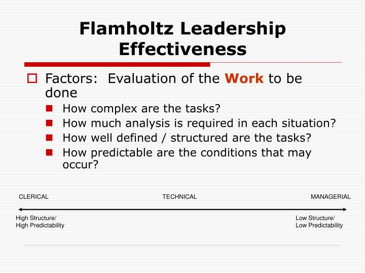 Flamholtz Leadership Effectiveness