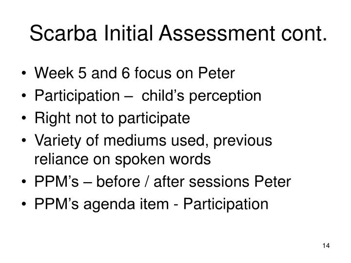 Scarba Initial Assessment cont.