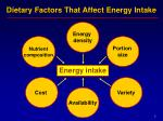 dietary factors that affect energy intake