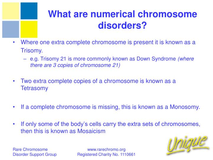 What are numerical chromosome disorders?