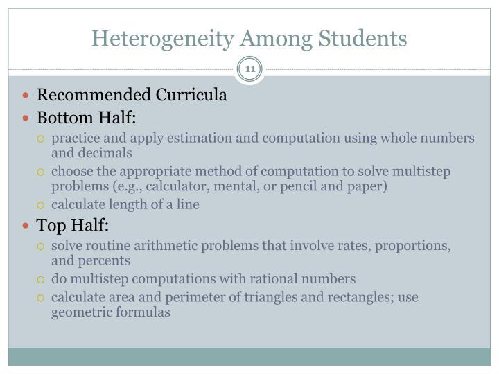 Heterogeneity Among Students