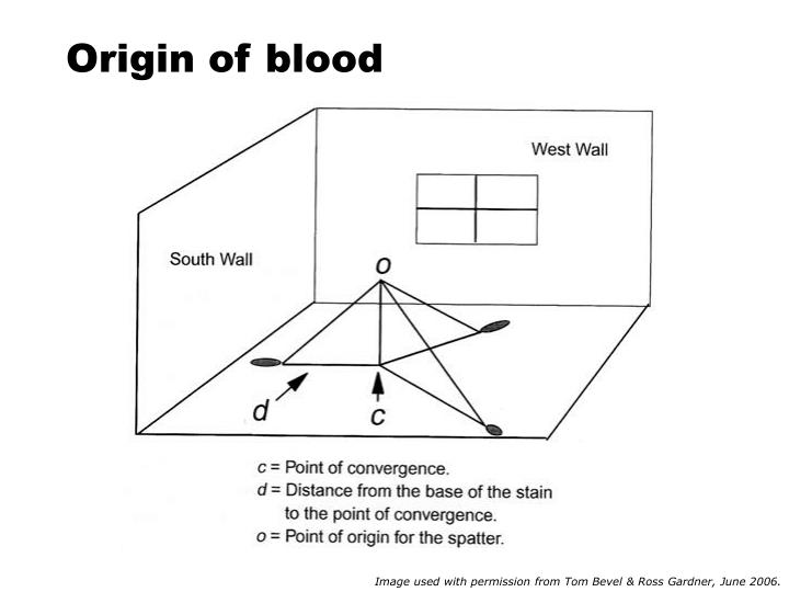 Origin of blood