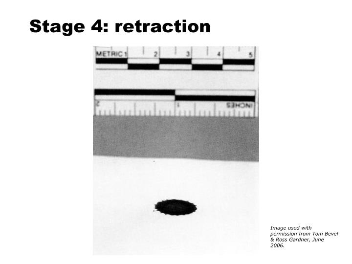 Stage 4: retraction