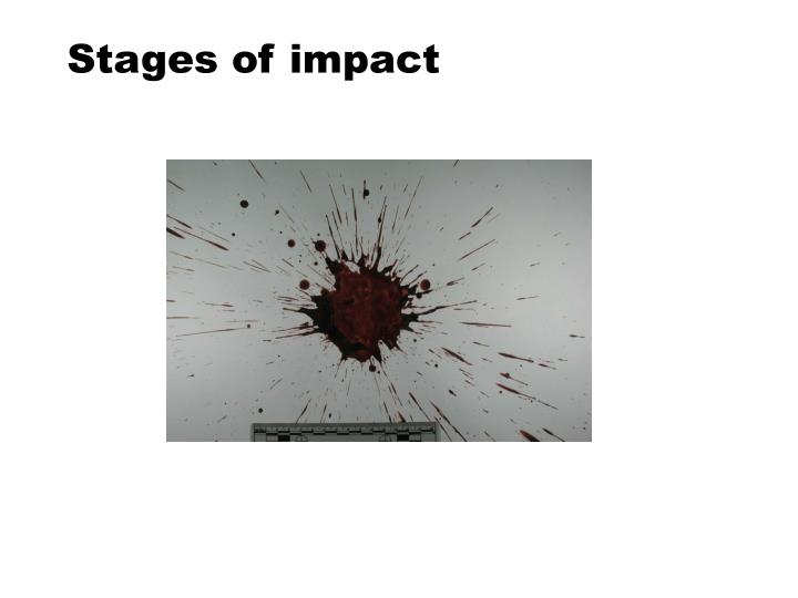 Stages of impact