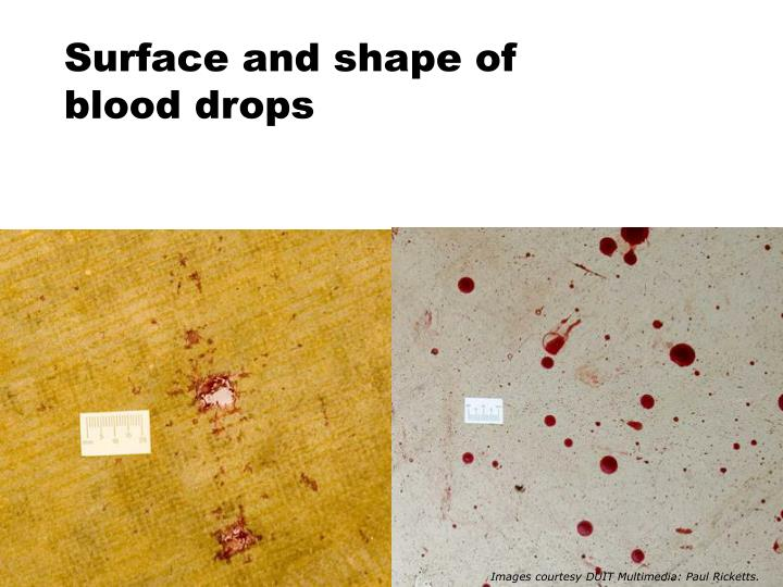 Surface and shape of blood drops