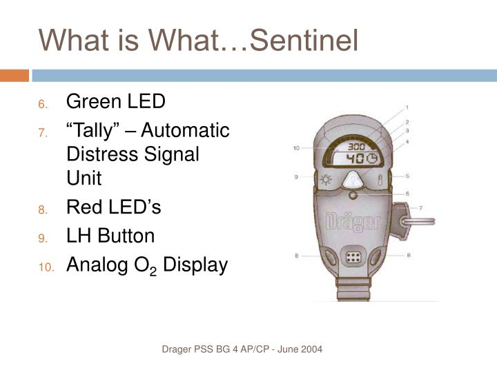 What is What…Sentinel