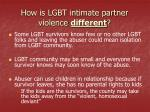 how is lgbt intimate partner violence different