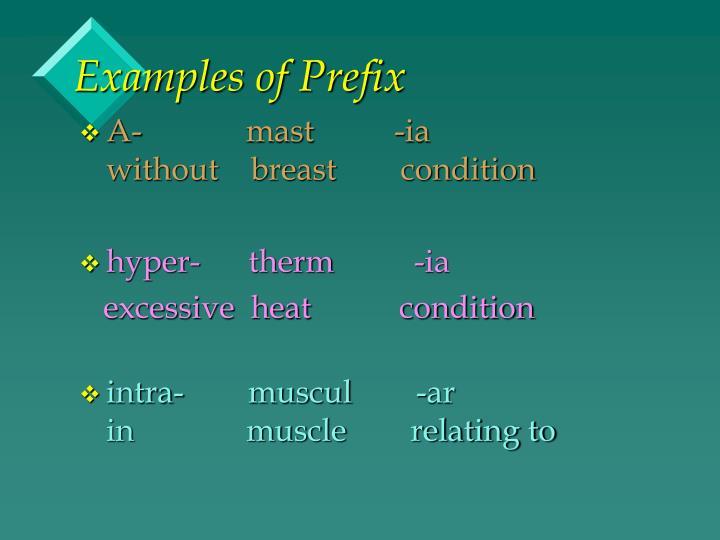Examples of Prefix