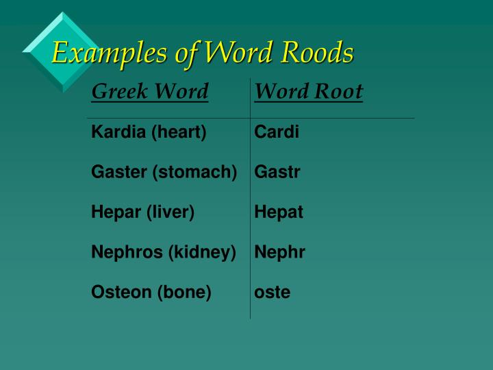 Examples of Word Roods