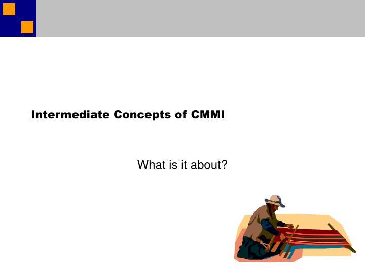 Intermediate Concepts of CMMI