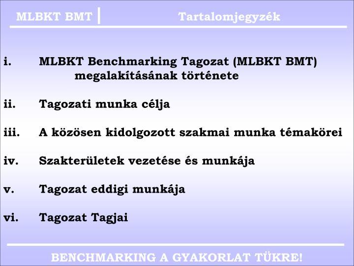 MLBKT BMT
