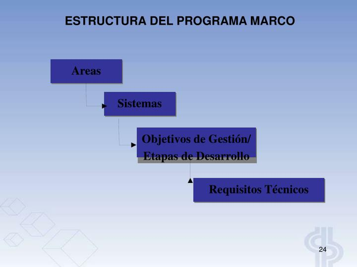 ESTRUCTURA DEL PROGRAMA MARCO