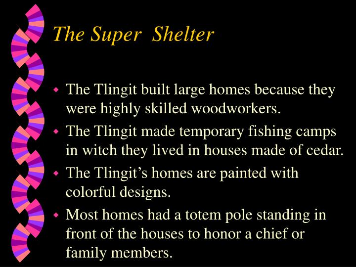 The Super  Shelter