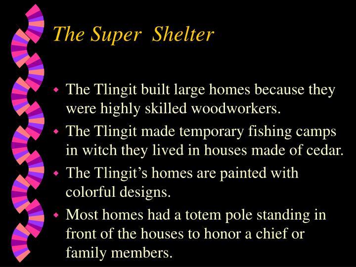 The Super  Shelter