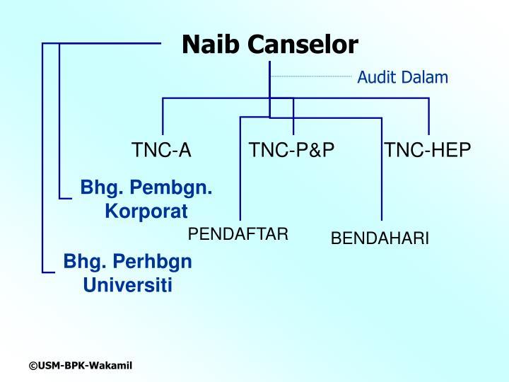 Naib Canselor
