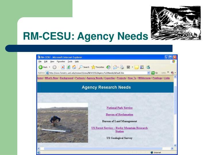 RM-CESU: Agency Needs