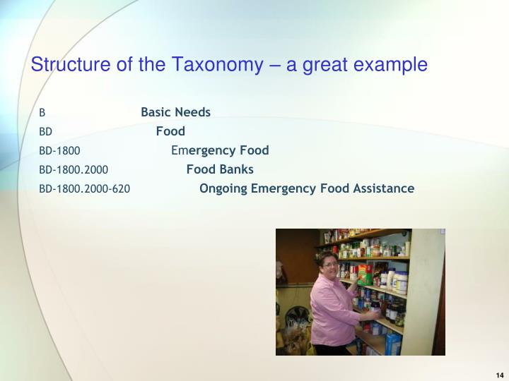 Structure of the Taxonomy – a great example