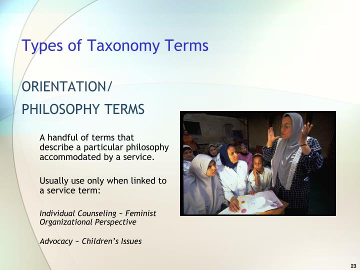 Types of Taxonomy Terms