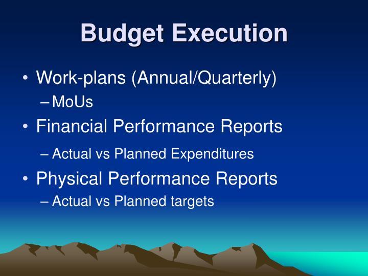 Budget Execution