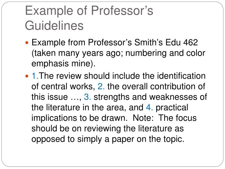 Example of Professor's Guidelines