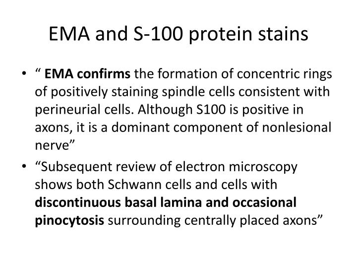 EMA and S-100 protein stains