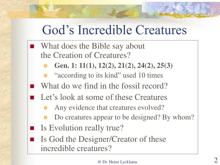 God's Incredible Creatures
