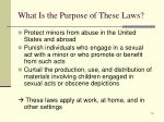 what is the purpose of these laws