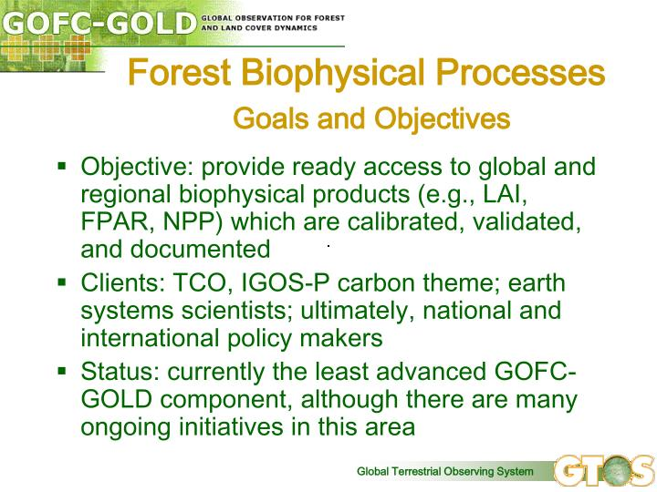 Forest Biophysical Processes