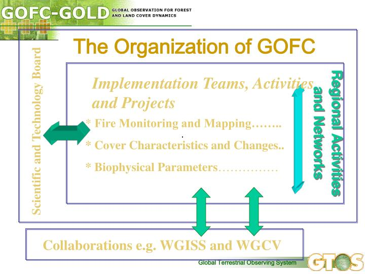 The Organization of GOFC