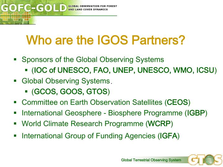Who are the IGOS Partners?