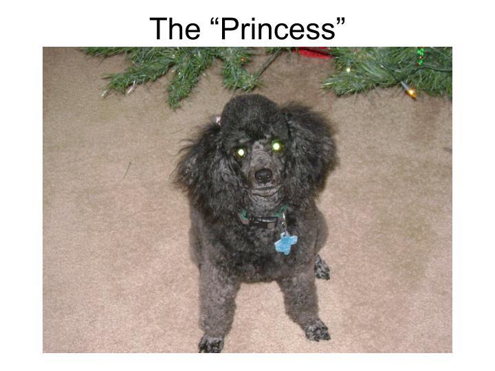 """The """"Princess"""""""