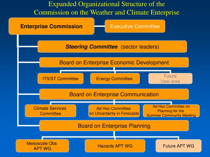 Expanded Organizational Structure of the