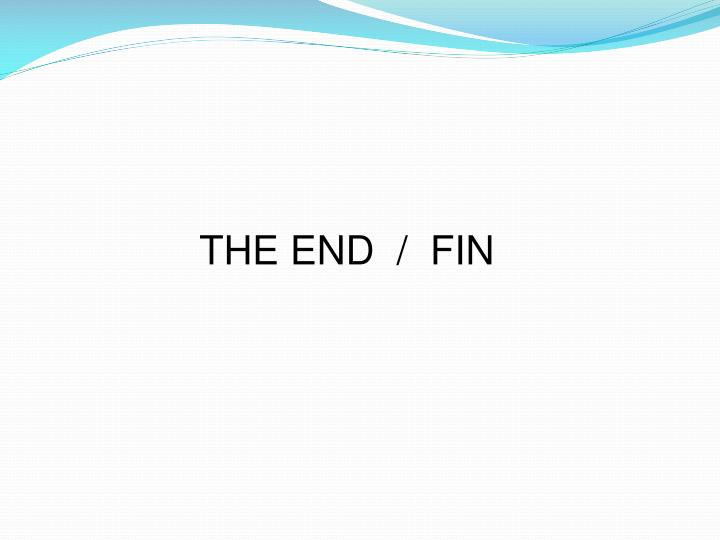 THE END  /  FIN