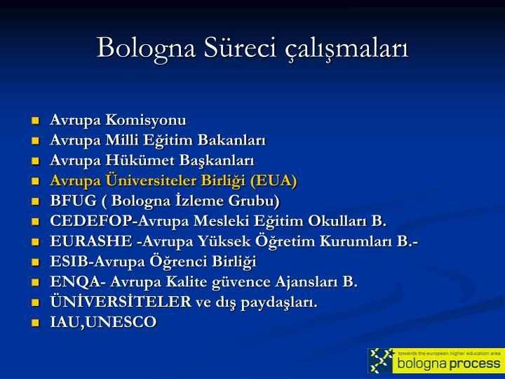 Bologna Süreci çalışmaları
