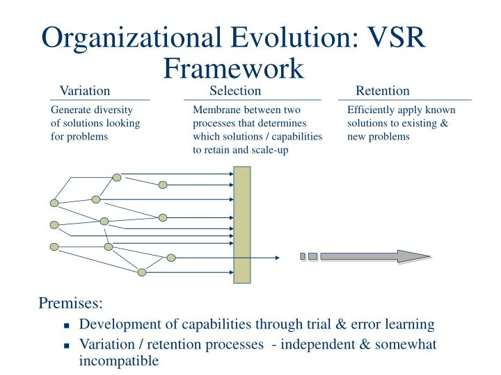 Organizational Evolution: VSR Framework