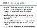 tactile phi perceptions