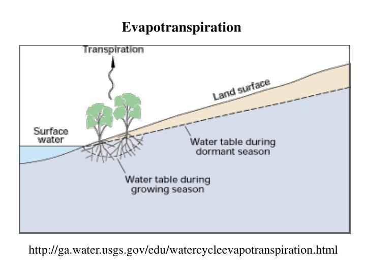 http://ga.water.usgs.gov/edu/watercycleevapotranspiration.html