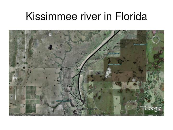 Kissimmee river in Florida
